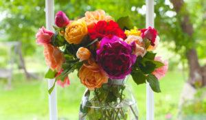 Flori proaspete