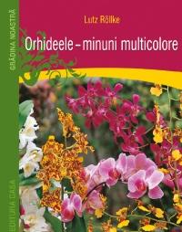 Orhideele, minuni multicolore